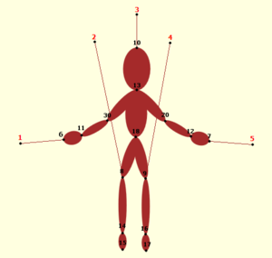 図148 操り人形の limb と node